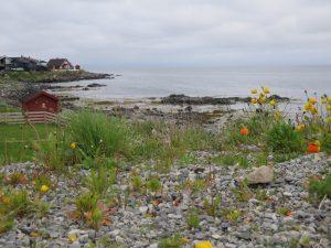 Nórska príroda.