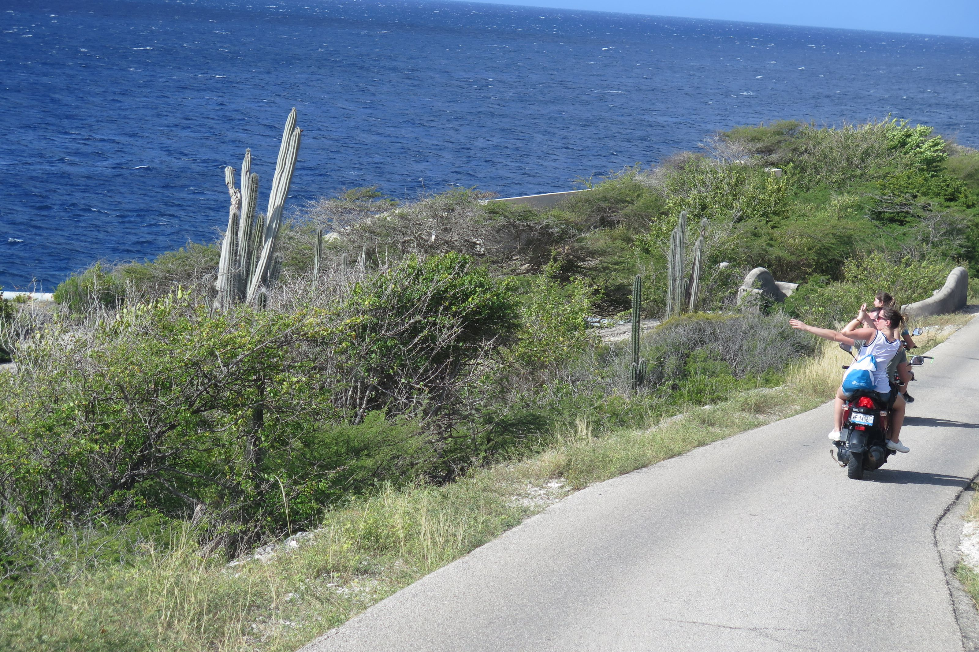 Bonaire_-_Drive_around_(4)