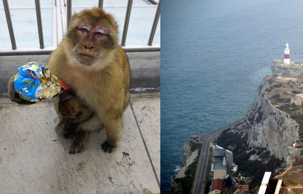 Opica s čipsami a vyhliadka s majákom, Titulka k článku Čo vidieť na Gibraltári