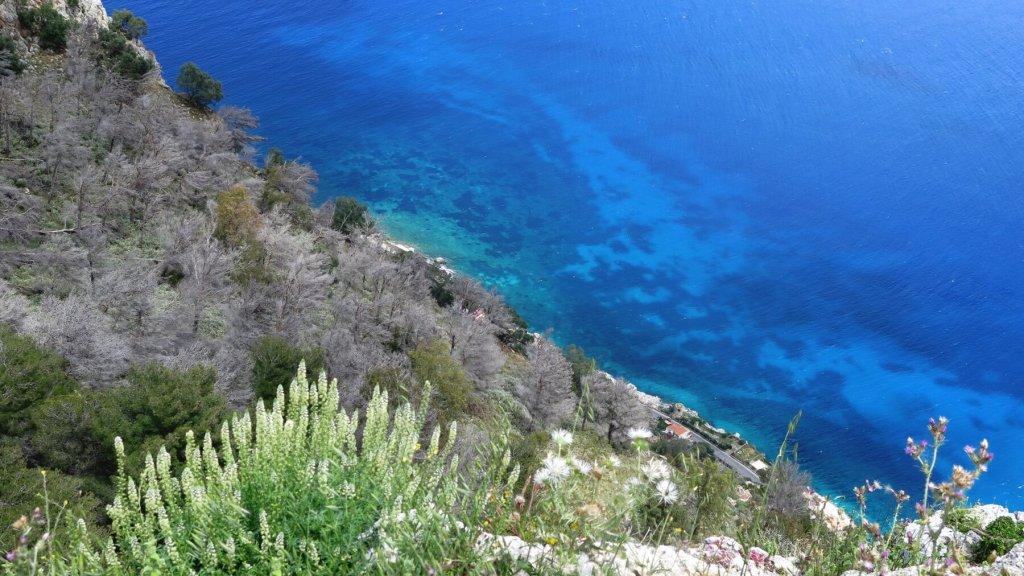 Výhľad z hory Pellegrino na more